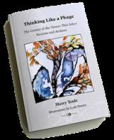 BookInfoBookWeb